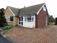 Westbourne Semi-Detached Bungalow to rent