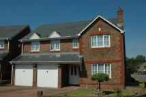 Detached home in Cavell Way, Manor Park...