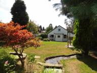 Detached Bungalow for sale in Brighton Road, Tadworth