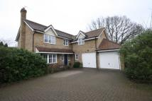 Detached property to rent in Mulberry Gardens, Shenley