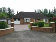Detached Bungalow for sale in Low Lane, Brookfield