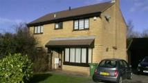 4 bedroom Detached house to rent in Wansford Close...