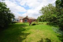 Detached Bungalow for sale in Ipswich Road, Yaxley, Eye