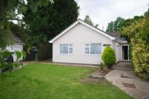 Detached Bungalow for sale in Maple Close, Yaxley, Eye