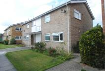 1 bed Flat to rent in Jennings Way, Diss