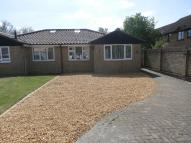 Bungalow to rent in Holkham Mead