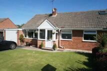 Semi-Detached Bungalow for sale in Park Close, Claverdon