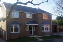 Cullum Close new property for sale