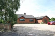 3 bedroom Detached Bungalow for sale in The Bungalow...