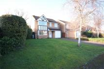 4 bed Detached property in Bliss Avenue, SHEFFORD...