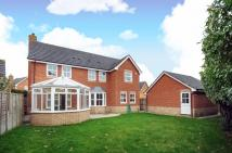 4 bed Detached house to rent in Kingston upon Thames