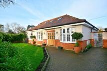 5 bedroom Bungalow for sale in Salisbury Road...
