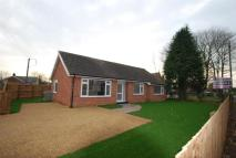 Detached Bungalow for sale in Elmswell