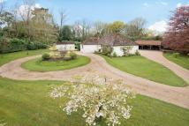 Detached Bungalow in Tongs Wood Drive...