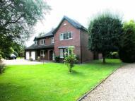 4 bedroom home in Lodge Gardens Gt Carlton...