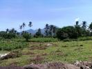 Dumaguete Land for sale