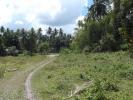 Dumaguete Land