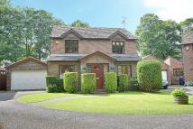 4 bedroom Detached house in Parkshiel, South Shields...