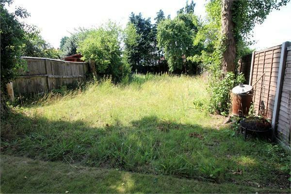 Feature Meadow Lawn