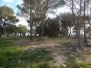 Land in Moraira, Alicante, Spain