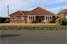 Detached Bungalow for sale in Hargham Road...