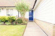 Semi-Detached Bungalow for sale in Meadow Park, Braintree...