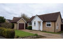 Detached Bungalow for sale in Walsingham Court...