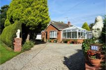 Detached Bungalow for sale in Fen Road, Spilsby...