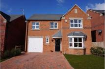 Detached property for sale in St. Werburghs View...