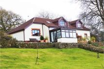 Detached home for sale in The Common, St Briavels...