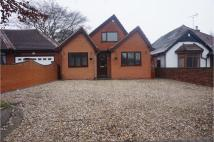 4 bed Detached Bungalow to rent in Chester Road...
