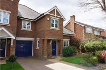 3 bed semi detached home to rent in Langham Park Place...
