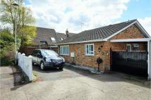3 bed Bungalow in Birch Copse...