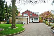 Detached home in Manor Drive, Longfield...
