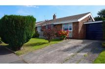 Detached Bungalow for sale in Mayfair Close...