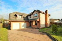 5 bedroom Detached home in Haining Place...