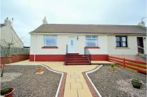 3 bed semi detached home in Springfield, Dunbar...