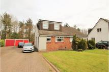 Semi-Detached Bungalow for sale in Redburn Road, Glasgow...