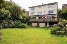 Detached home for sale in Old Totnes Road...