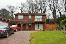 4 bed Detached property for sale in Plasmarl, Llwydcoed...