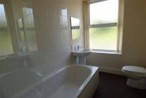 property to rent in Rigby Street, Colne, BB8