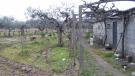 Lousa Farm Land