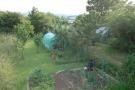 Vegetabe Garden
