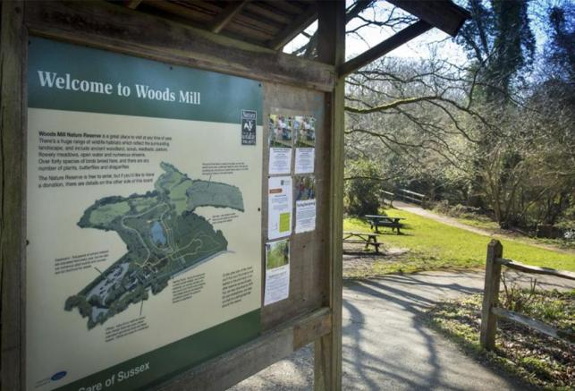 Woods Mill