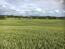 property for sale in Kilcullen, Kildare