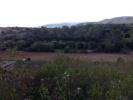 Land for sale in Establiments, Mallorca...