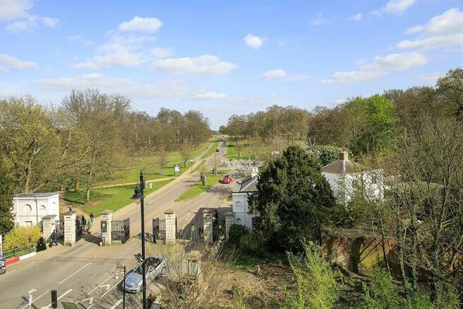 Richmond Park Views