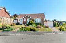 Detached Bungalow for sale in Churchill Road, Seaford...