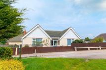 3 bedroom Bungalow for sale in Sutton Drove, Seaford...