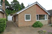 2 bedroom Detached Bungalow to rent in The Paddock, Kirkheaton...